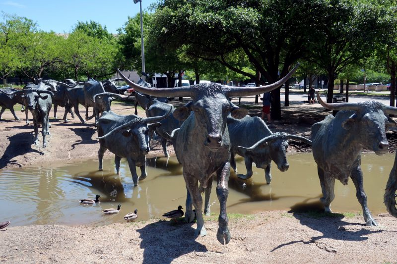 Cattle Drive Sculpture at Pioneer Plaza in Dallas